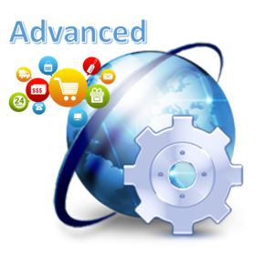 LCMS eCommerce Website Maintenance Advanced