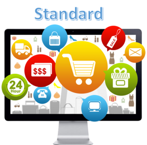 eCommerce Website Design Standard